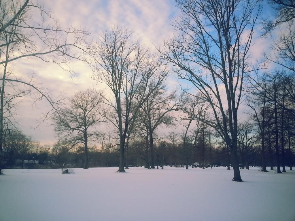 Winter Walk 2