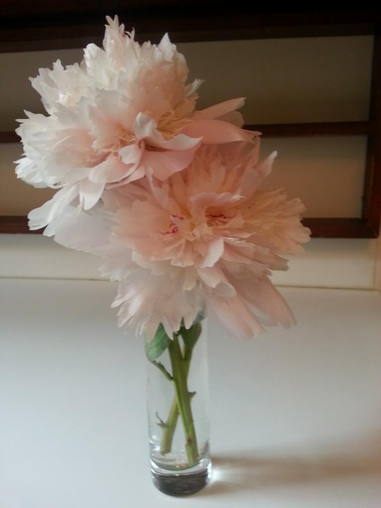 gbye flowers 1